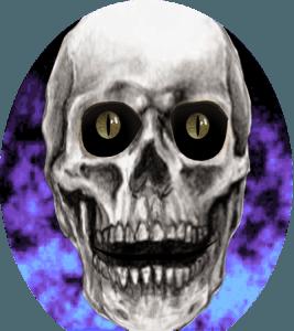 boney news skully bone logo